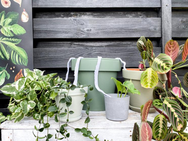 Door de stroken stof krijgen je planten toch genoeg vocht tijdens je afwezigheid