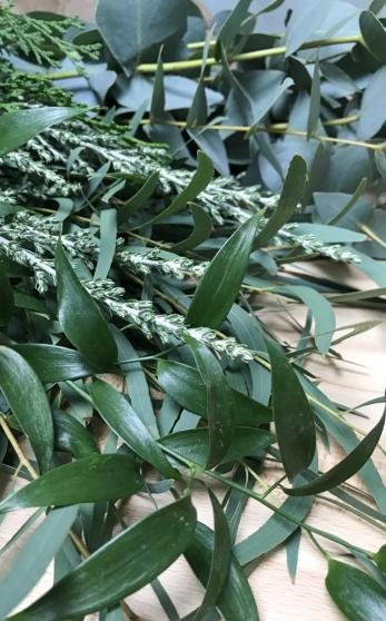 Ik koos o.a. voor twee soorten eucalyptus