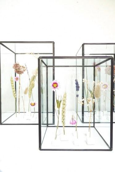 Een mini-museum vol droogbloemen