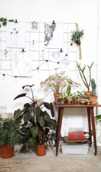Verliefd op zulke plantenhoekjes!