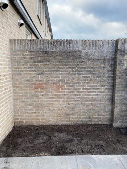 Wat te doen met zo'n lelijke muur? Mobilane had de oplossing!