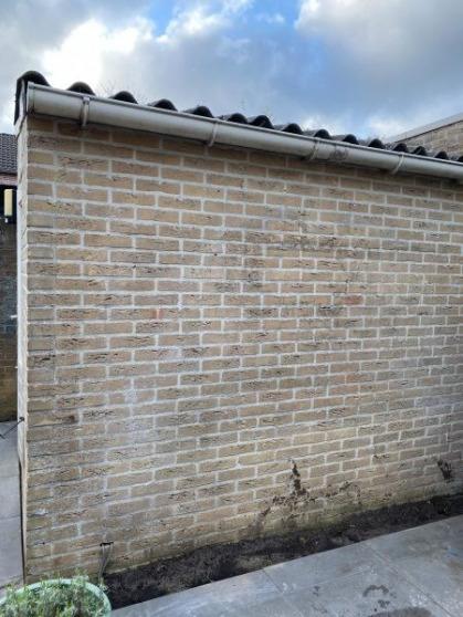 Vanuit huis kijk ik uit op deze muur. Die kon wel wat meer groen gebruiken