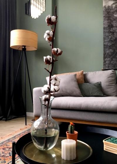 Een katoenplant past goed in een Werelds interieur