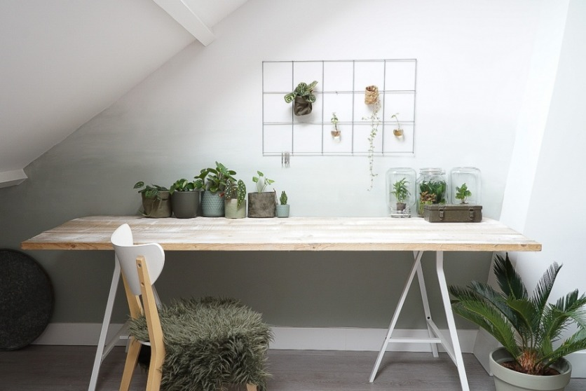 Verplaats je planten als ze onvoldoende zonlicht krijgen